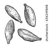 cardamom illustration  drawing  ... | Shutterstock .eps vector #656249848