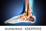 3d illustration of human body... | Shutterstock . vector #656399242