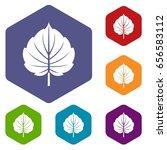 alder leaf icons set hexagon... | Shutterstock . vector #656583112
