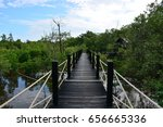 mangrove forest | Shutterstock . vector #656665336