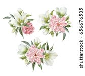 Bouquet Of Hellebore And...