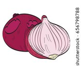 isolated pair of onions on a... | Shutterstock .eps vector #656798788