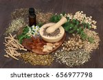 natural herbal medicine used to ... | Shutterstock . vector #656977798
