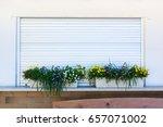flower planter box grass over... | Shutterstock . vector #657071002