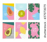 cool summer print with exotic... | Shutterstock .eps vector #657073075