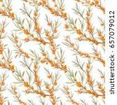 vegetable watercolor pattern of ... | Shutterstock . vector #657079012