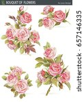 vector set of isolated rose... | Shutterstock .eps vector #657146335
