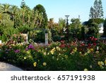 princess grace rose garden ... | Shutterstock . vector #657191938