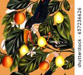 bright tropical pattern with... | Shutterstock .eps vector #657236626