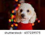 Stock photo steve jobs 657239575