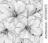 floral seamless pattern. flower ... | Shutterstock .eps vector #657256372