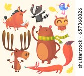 Collection Of Cartoon Forest...
