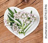 Small photo of Homeopathy and cooking with valerian