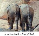 Two Little Elephants   Walking...