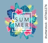 summer exotic and tropic... | Shutterstock .eps vector #657661276