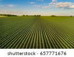 beautiful agricultural...   Shutterstock . vector #657771676