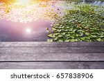 waterfront lotus pond... | Shutterstock . vector #657838906