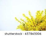 plastic flower on wall... | Shutterstock . vector #657865006