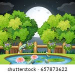 fish in the pond at nighttime... | Shutterstock .eps vector #657873622