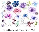 watercolor set with anemones.... | Shutterstock . vector #657913768