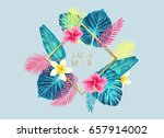 summer exotic and tropic... | Shutterstock .eps vector #657914002