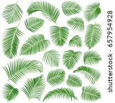 palm leaves vector set | Shutterstock .eps vector #657954928