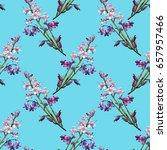 hyacinth seamless pattern.... | Shutterstock . vector #657957466