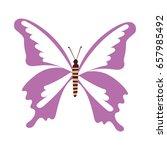 cute purple butterfly cartoon   Shutterstock .eps vector #657985492