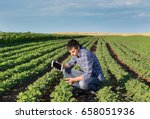 young handsome agriculture...   Shutterstock . vector #658051936