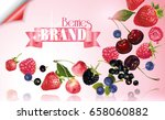 vector fruit banner with mix of ... | Shutterstock .eps vector #658060882