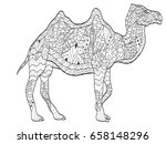 vector coloring camel for... | Shutterstock .eps vector #658148296