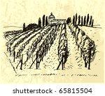 vineyard. bottle label. | Shutterstock .eps vector #65815504