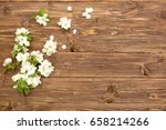 spring flowers of blossoming... | Shutterstock . vector #658214266
