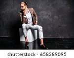 portrait of handsome fashion... | Shutterstock . vector #658289095