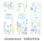 vector hand drawn floral cards... | Shutterstock .eps vector #658315516