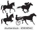 equestrian sport horses and