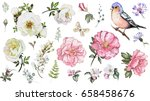 set watercolor elements of... | Shutterstock . vector #658458676