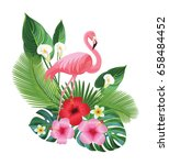 tropical composition and... | Shutterstock .eps vector #658484452