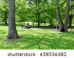 the picnic area in the wooded... | Shutterstock . vector #658536382