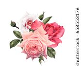 bouquet of roses  watercolor ... | Shutterstock . vector #658553176