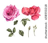 flowers and leaves   can be... | Shutterstock . vector #658553218