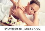 massage and body  care. spa... | Shutterstock . vector #658567702