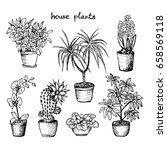 house plants   set of 7 hand... | Shutterstock .eps vector #658569118