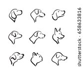 vector group of hand drawn dog... | Shutterstock .eps vector #658633816