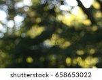 nature bokeh background | Shutterstock . vector #658653022