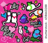 colorful patches with cats ... | Shutterstock .eps vector #658663288