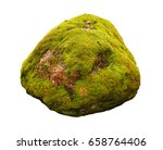 Large Stone Covered With Green...