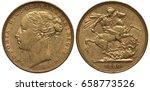 great britain british golden... | Shutterstock . vector #658773526