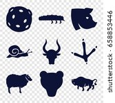 Wildlife Icons Set. Set Of 9...