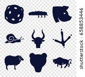 Wildlife Icons Set. Set Of 9...